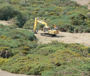 Gorse removal by heavy equipment