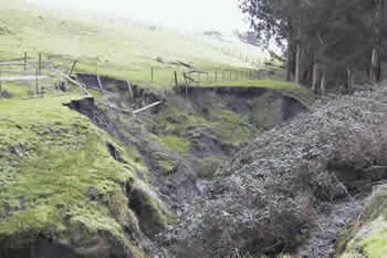 eroding bank of a seasonal creek on a ranch
