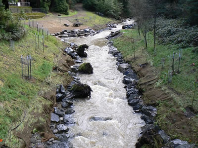 Dutch Bill Creek restored after dam removal. Shows bank stabilization with boulders.